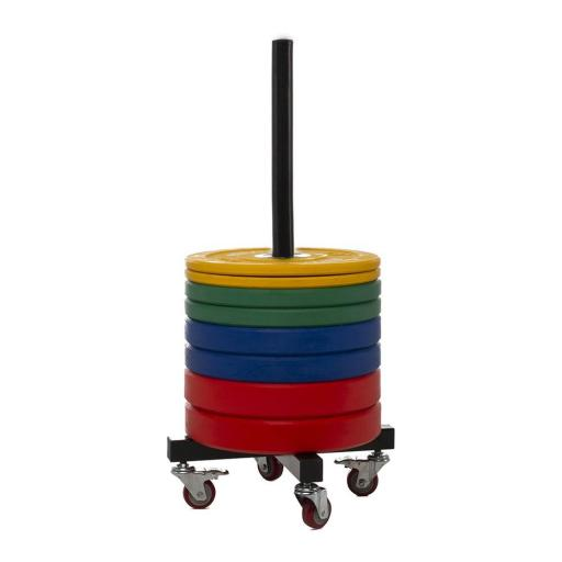 Soporte - Rack Vertical para Discos Bumper