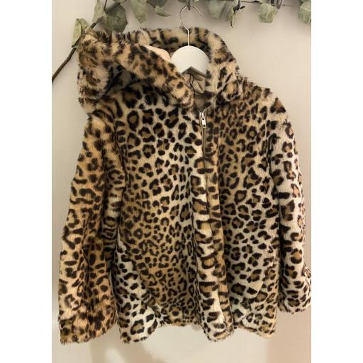 Cazadora pelo leopardo my bella moon