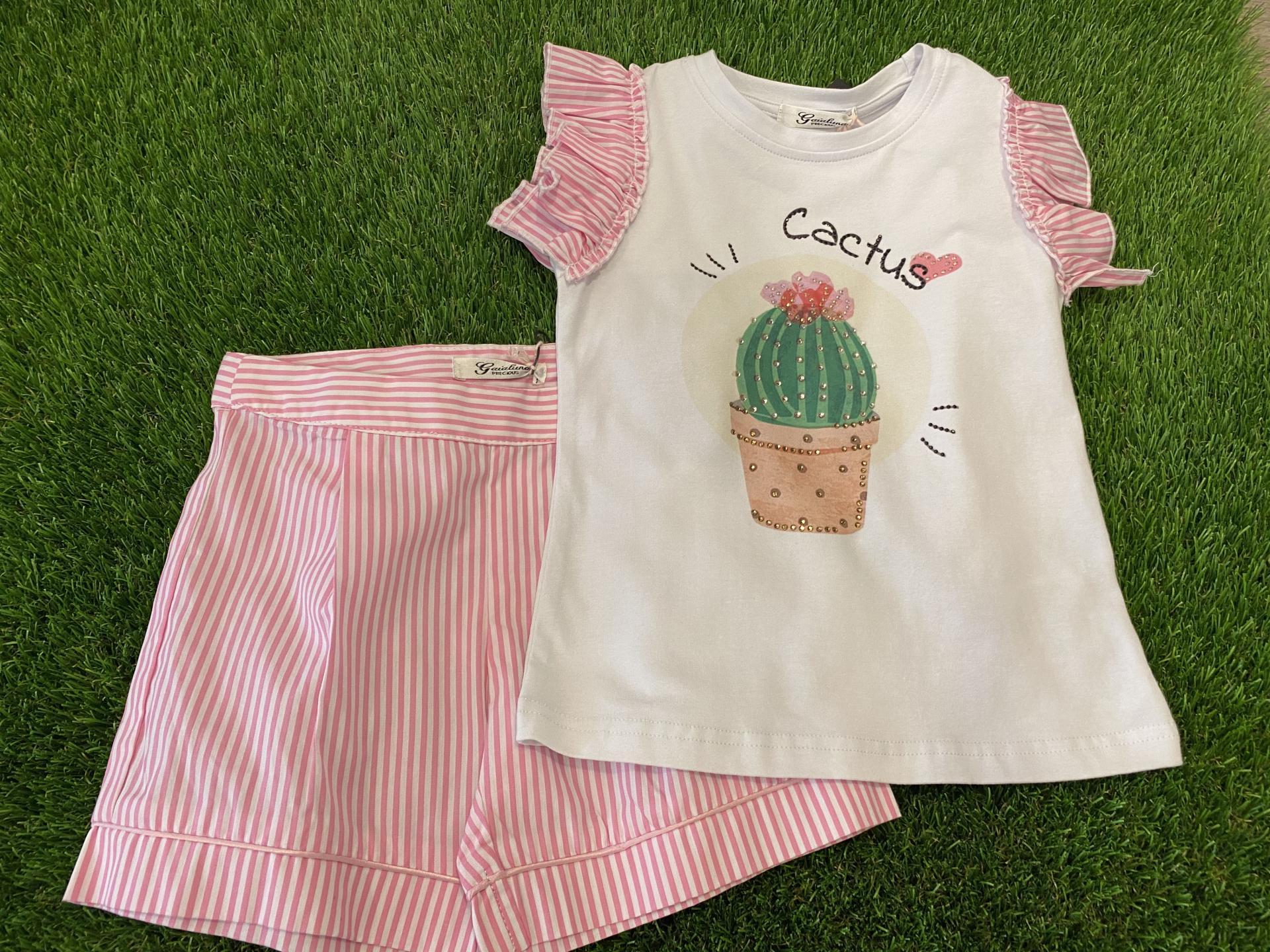 Conjunto cactus