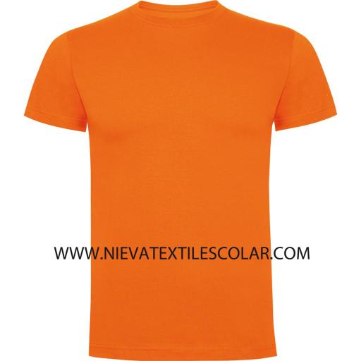 Camiseta Color M/C