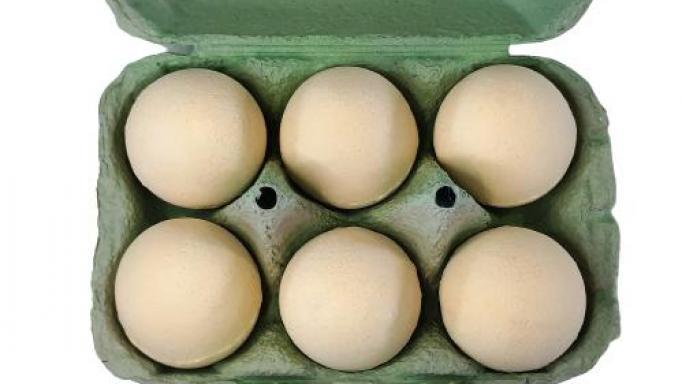 Limón. Cartón Huevo efervescente.