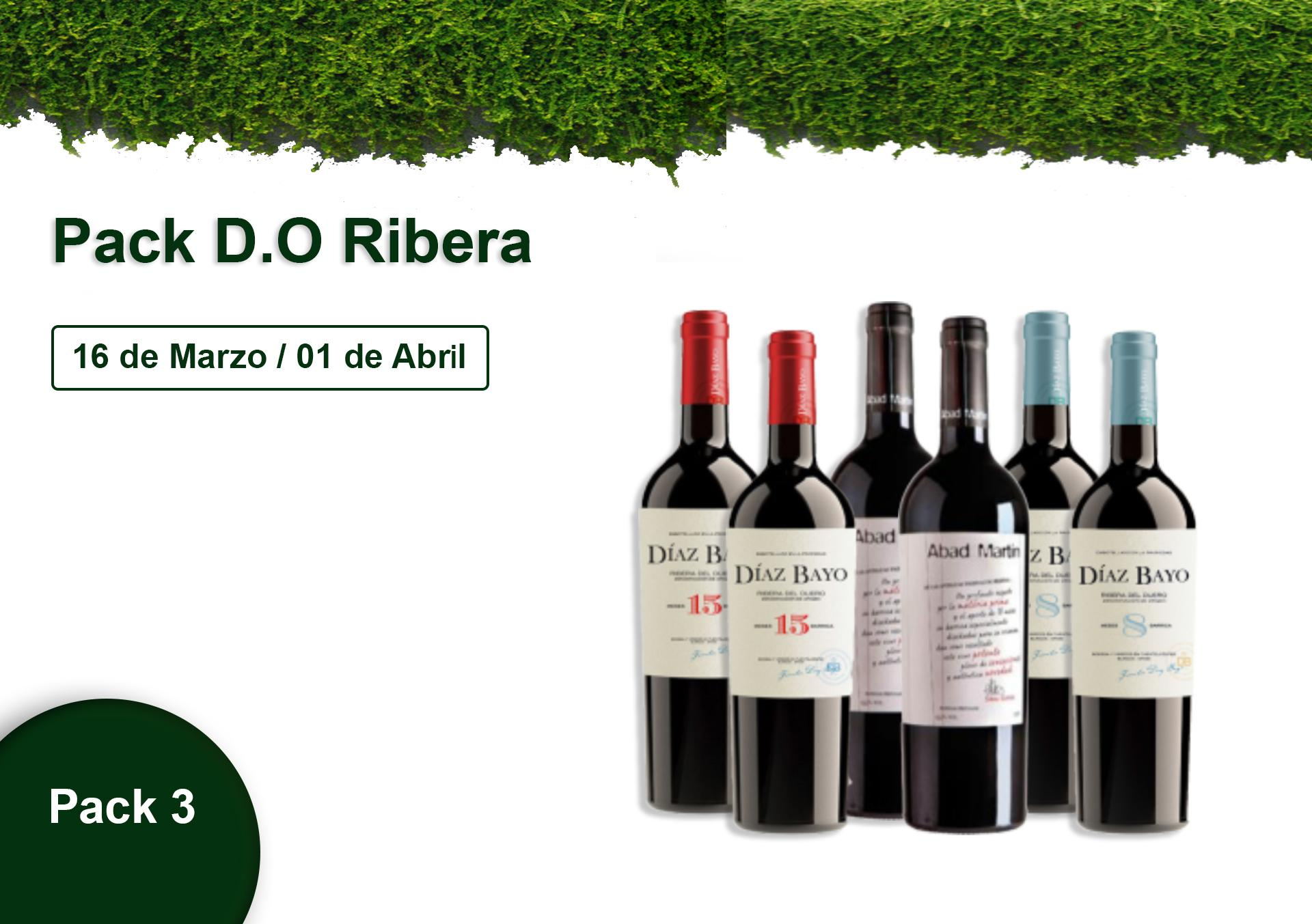 Pack 3 - D.O Ribera - 10% DESCUENTO