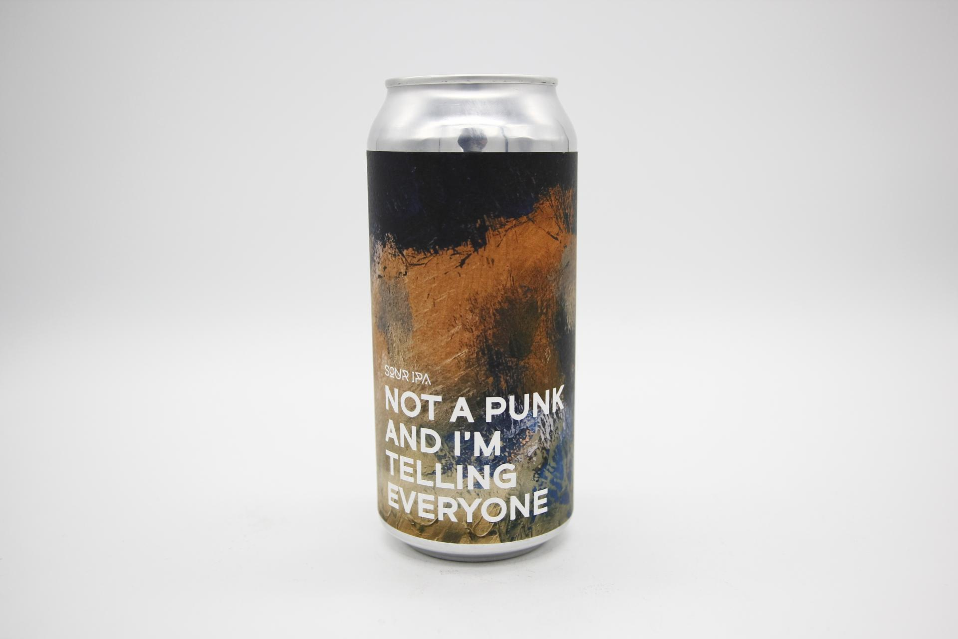 BOUNDARY - NOT A PUNK AND I'M TELLING EVERYONE 44cl