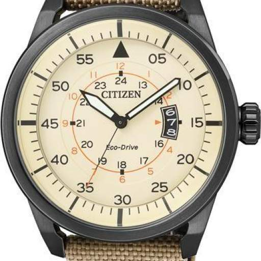 CITIZEN AVIATOR AW1365-19P