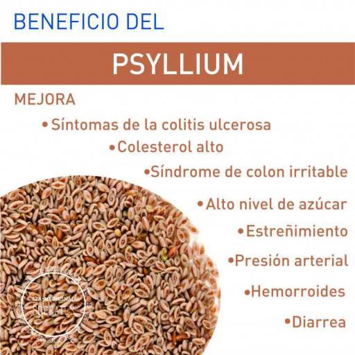 Psyllium Husk [3]