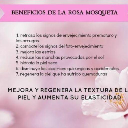 Rosa Mosqueta en polvo ecológica [3]