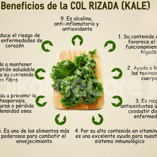 Kale en polvo ecológica [3]