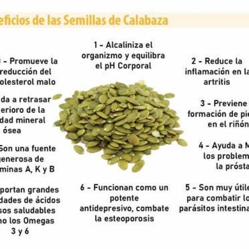 Proteína de Calabaza ecológica (60%) [3]
