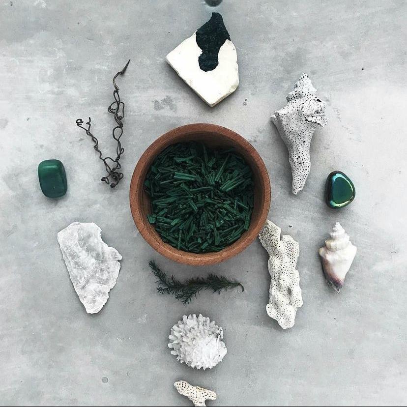 Spirulina en polvo ecológica