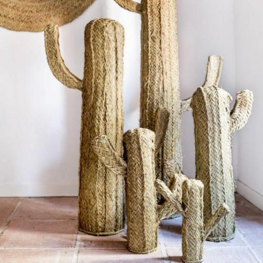 Cactus de esparto [1]