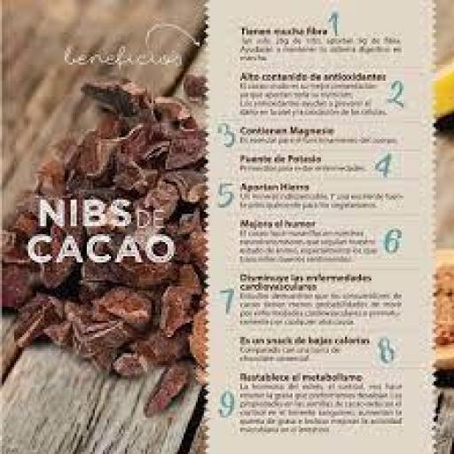 Cacao Nibs ecológicos [3]