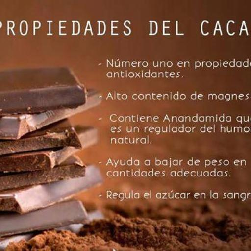 Cacao en polvo ecológico [3]