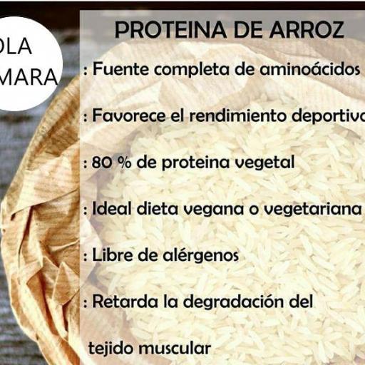 Proteína de Arroz ecológica (80%) [3]