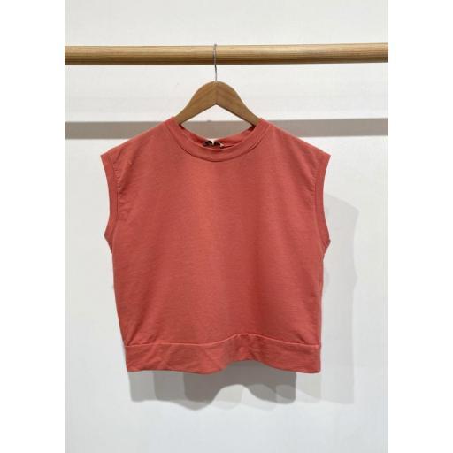 Camiseta Clara [3]