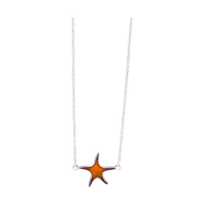 Gargantilla pikadura Estrella