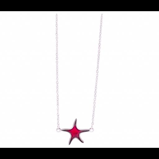 Gargantilla pikadura Estrella [1]