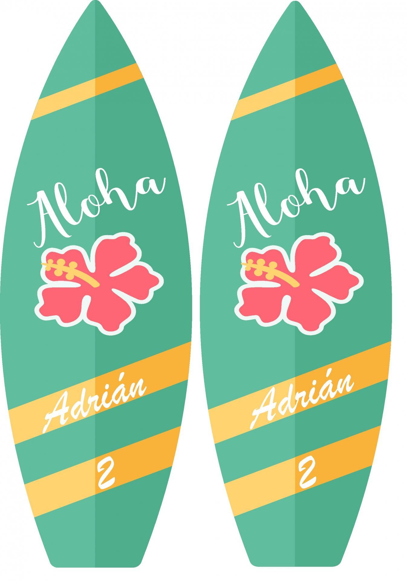 Tablas de surf photocall