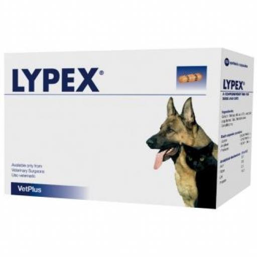 LYPEX 60 Capsulas Enzimas Pancreáticas Perros y Gatos