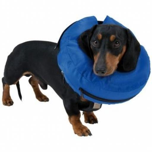 Collar Isabelino Inflable Buster