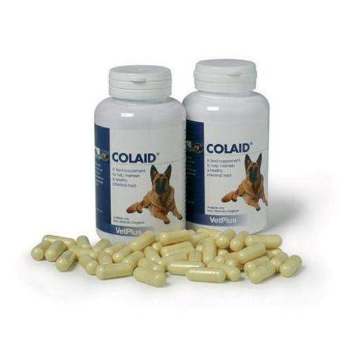 COLAID 90 Capsulas Gastrointestinal Perro