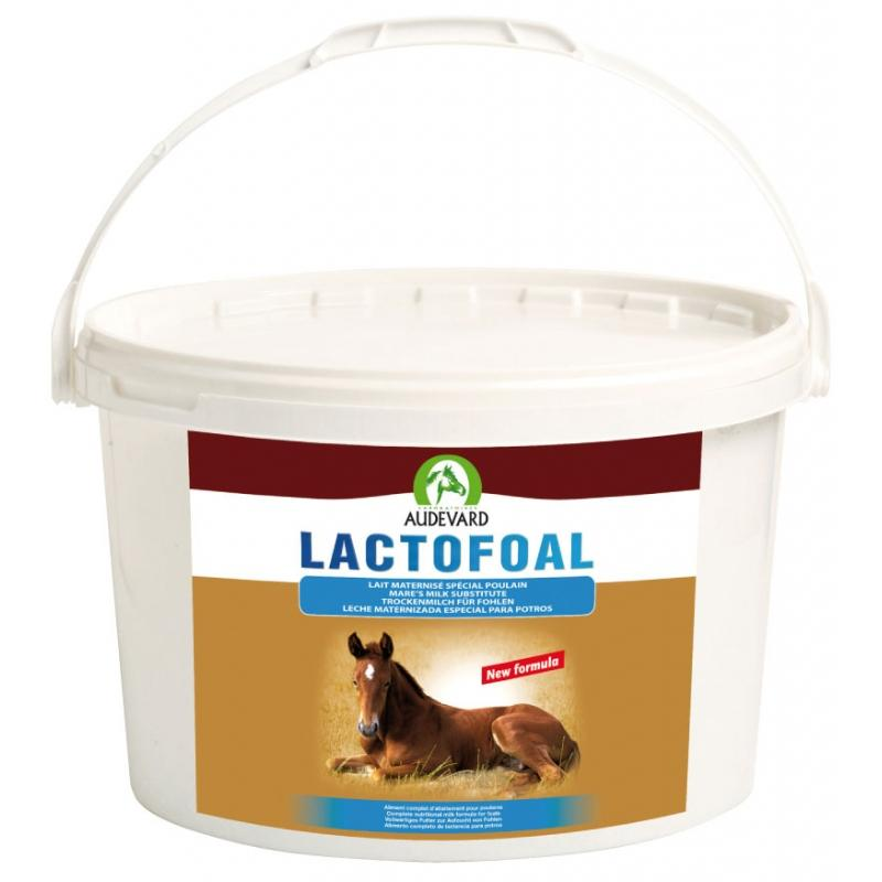 AUDEVARD Lactofoal  (Leche Potros)