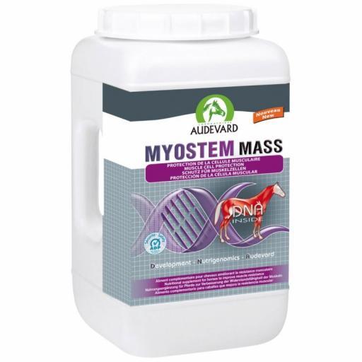 AUDEVARD Myostem Mass (Desarrollo Muscular y Recuperación Caballos)