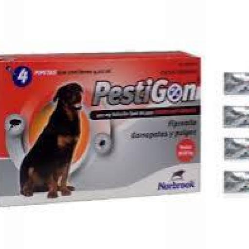 Antiparasitario Externo Pestigon Perros Muy Grandes +40kg