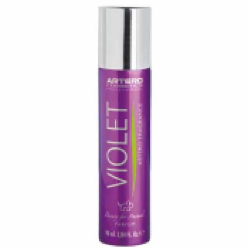 Artero Perfume Violet
