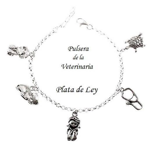 Pulsera veterinaria plata