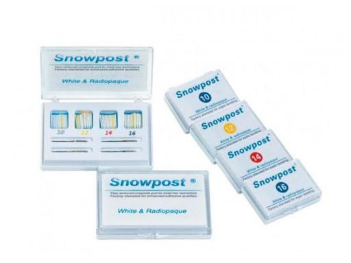 SNOWPOST REPOSICION 10 UND