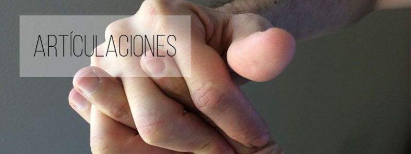 - Articulaciones y huesos