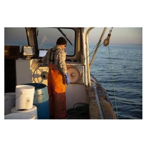 CAMISA SALTY CREW WESTBOUND - NATURAL [2]