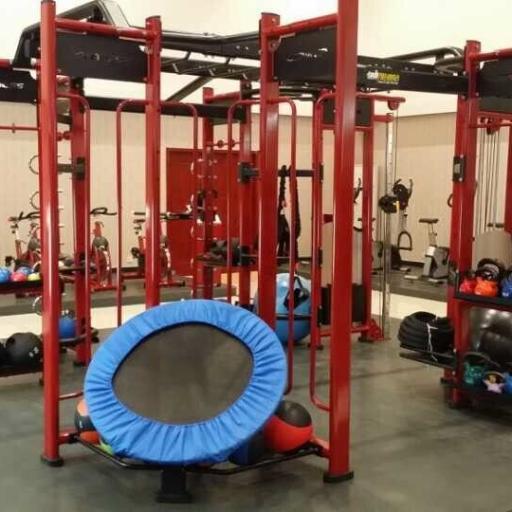 MultiEstación CrossFit Hammer High (Versión Standar) [2]