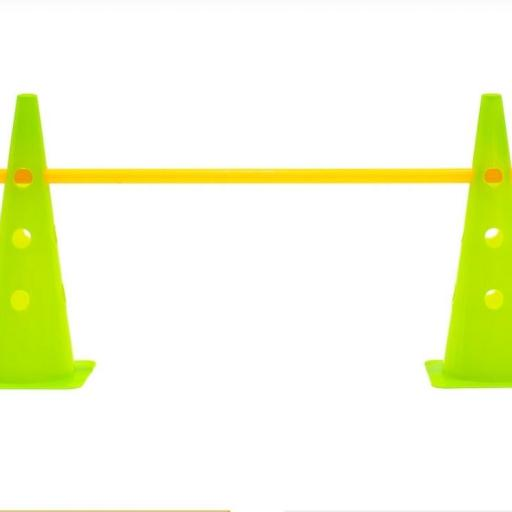 Cone With Adjustable Barrier. f102C [2]