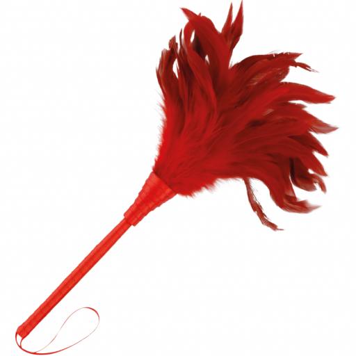 Pluma Seductora roja