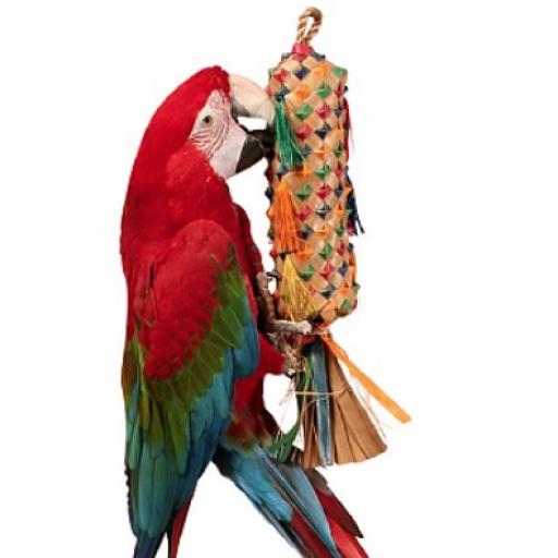 Piñata [1]