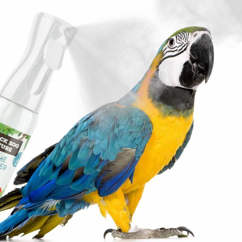 Spray Nebulizador