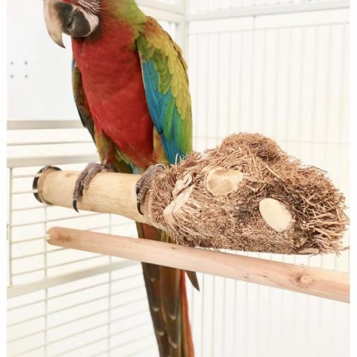 Bamboo perch [1]