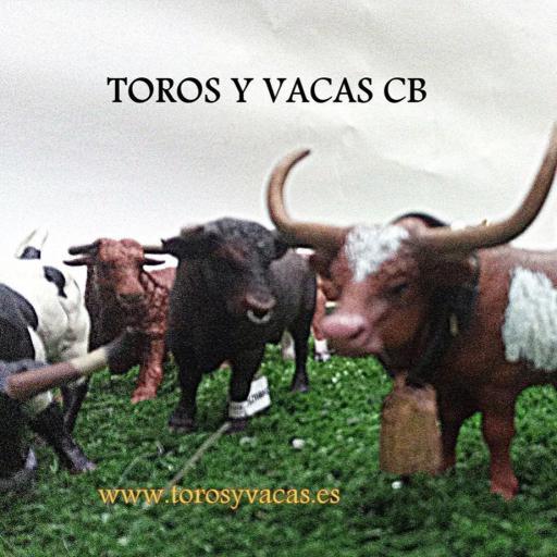 CABESTRO NEGRO CON MANCHAS [3]
