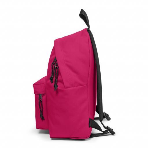 Mochila eastpak Padded Pak'r ruby pink_4.jpg [3]
